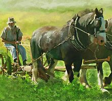 Haymakers - On the Darling Downs near Warwck Qld. by LeonD