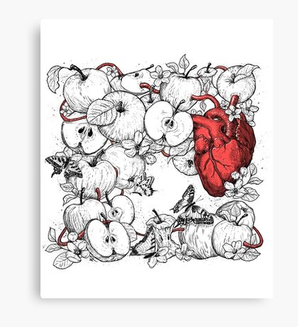 coronary apples Canvas Print