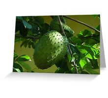 GUYABANO, THE SOURSOP FRUIT - Cancer Remedy- PICTURE/CARD Greeting Card
