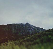 Alaska Frontier by Leah Flores