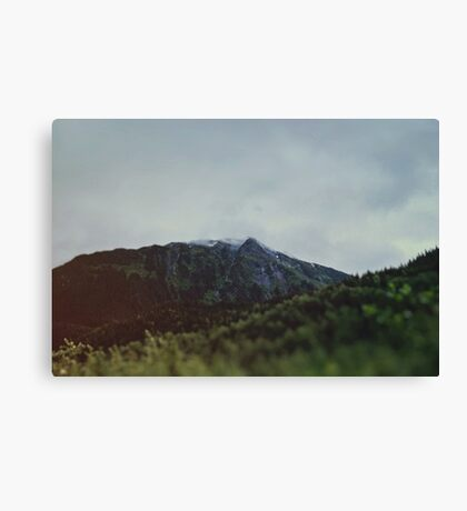 Alaska Frontier Canvas Print