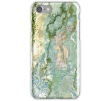 Okavango marbled iPhone Case/Skin