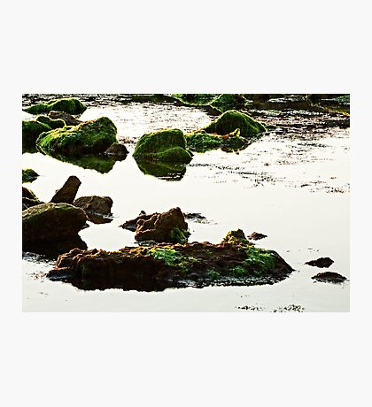The passetto rocks and water, Ancona, Italy Photographic Print