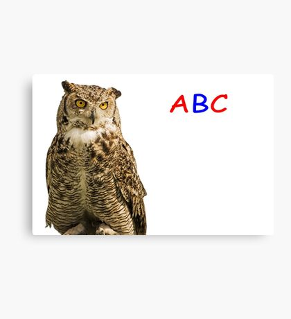Owl ABC Canvas Print