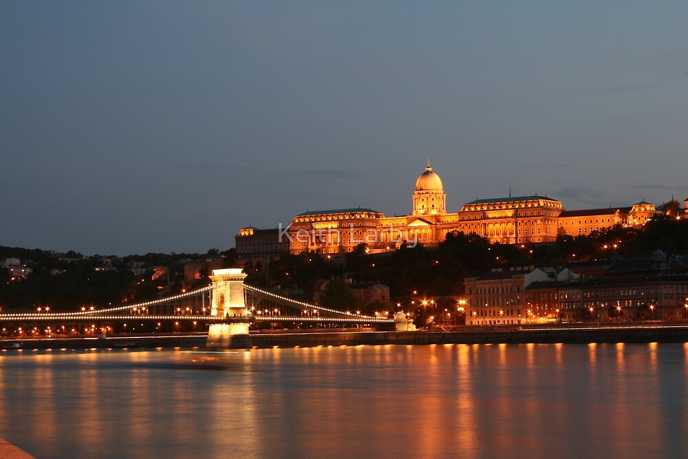 The Royal Palace, Budapest, Hungary by Keith Larby