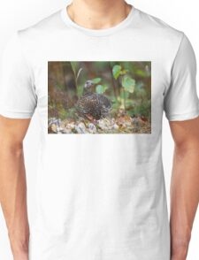 Spruce grouse in Algonquin Park T-Shirt
