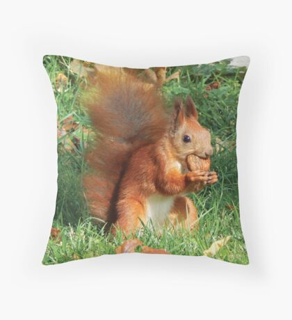 Are You Nuts? Throw Pillow