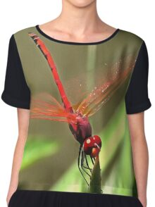 Beautiful Firecracker Dragonfly Chiffon Top