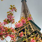 Paris ... Magnifique .. The Calendar by Michael Matthews