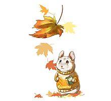 Autumn Hamster Photographic Print