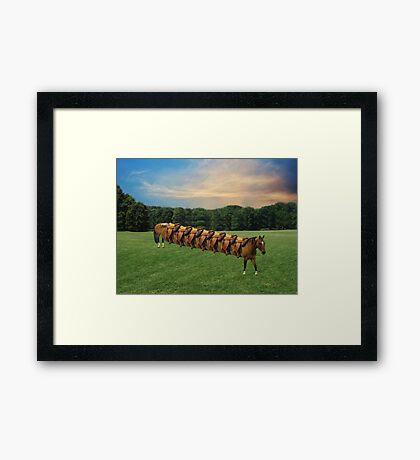 (✿◠‿◠)  HORSE LIMO RIDES SEVEN LETS RIDE LOL (✿◠‿◠) Framed Print