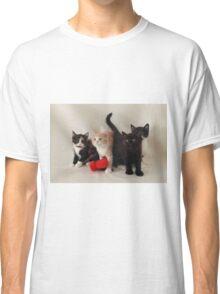 fluffy kittens Classic T-Shirt