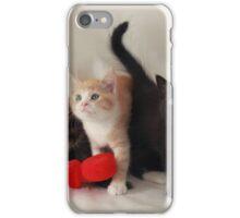 fluffy kittens iPhone Case/Skin