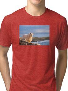 Donegal Sheep Tri-blend T-Shirt