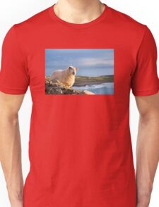 Donegal Sheep Unisex T-Shirt