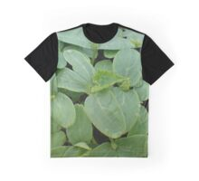 Cucumber nursery Graphic T-Shirt