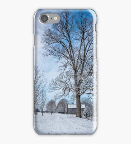 Frosty Blue iPhone Case/Skin