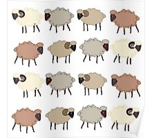 Seamless pattern  with sheep Poster