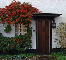Berry Nice Cottage At Topsham, Devon, uk by lynn carter