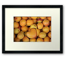 apricot with heart love Framed Print