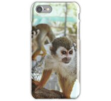 A Couple of Squirrel Monkeys iPhone Case/Skin