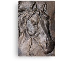 horse head Canvas Print
