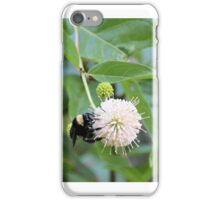 Bumblebee on Buttonbush Flower iPhone Case/Skin