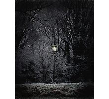 Reality of Narnia Photographic Print