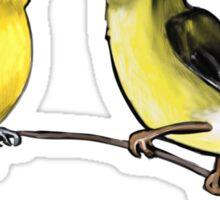 Lesser Goldfinches Sticker