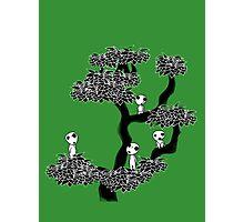 Kodama Tree Photographic Print