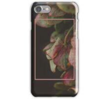 Hydrangeas iPhone Case/Skin
