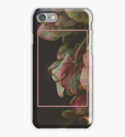 Hydrangeas iPhone Case/Skin
