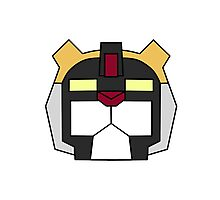 Voltron- Black Lion Photographic Print