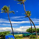 A Path In Kaanapali by James Eddy