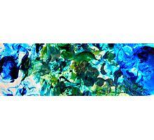 Sea Flourish Photographic Print