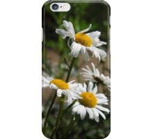 Blowing In The Wind iPhone Case/Skin