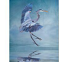 Misty Blue Photographic Print