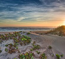 Sand Dune at Sunrise by Tod and Cynthia Grubbs