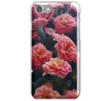 Springtime Flowers in the Window iPhone Case/Skin