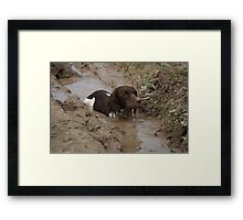 The healing power of nature :) Framed Print