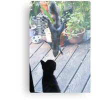 Henry and the Cat Canvas Print