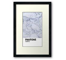 Marble Pantone  Framed Print