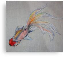 Goldfish Pond (close up #3) Metal Print