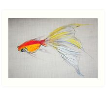 Goldfish Pond (close up #1) Art Print