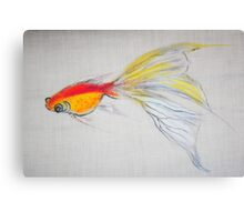 Goldfish Pond (close up #1) Canvas Print