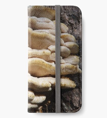 Tree Fungi Study No. One iPhone Wallet/Case/Skin