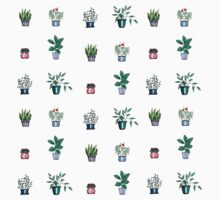 A Collection of House Plants One Piece - Short Sleeve