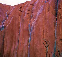 Waterfalls Running Down The Face Of Uluru at Dawn by Ronald Rockman