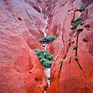 Waterfalls On Majestic Uluru (Ayres Rock) by Ronald Rockman