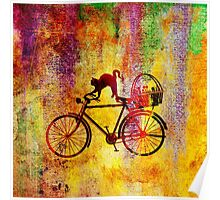 Cat and Bicycle Poster